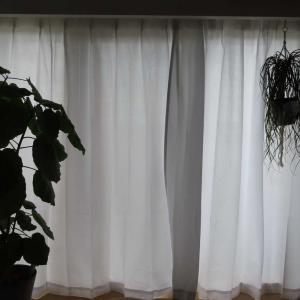 今更ながらカーテンを付けました