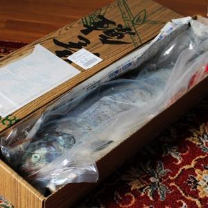 伊藤さんの鮭