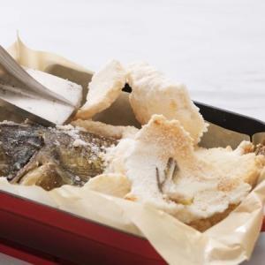 「ソイ」の塩釜焼きと「赤いか」カルパッチョ