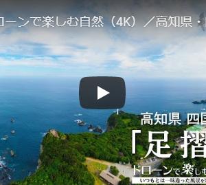 紺碧の太平洋と緑の足摺岬のコントラストが美しい