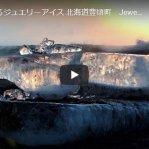 神秘のジュエリーアイスが打ち寄せる海岸