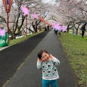 花見&コロナ&入園式