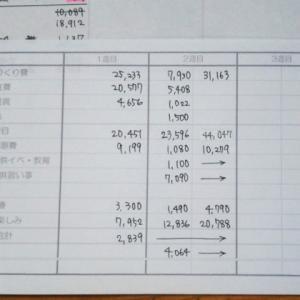 家計簿、その後。