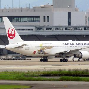 JAL 特別塗装機 日本博 福岡空港