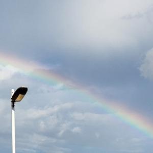 綺麗な虹ときゅうり収穫