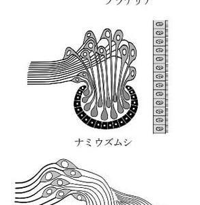 扁形動物の視覚器