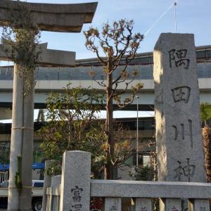 今日は隅田川神社のご紹介です。