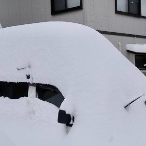 11 あららっ、大雪だ!