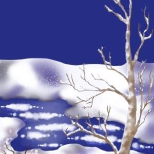 雪景色 途中