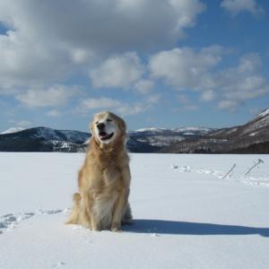 青い空~白い雪~元気なシニアさん💗