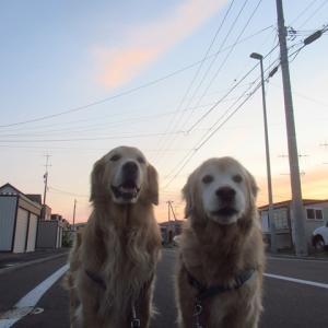 北海道の夏ですね~
