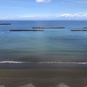 海鳥と松崎海水浴場で泳ぐ|松崎旅行〈16〉