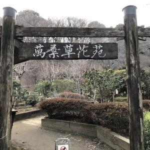 萬葉草花苑 薬師池公園