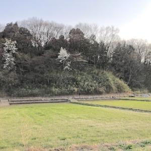 寺家ふるさと村|神奈川県青葉区