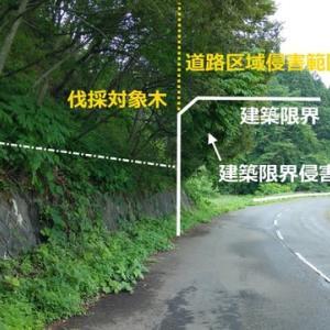 道路区域を侵害する民地の樹木の伐採について考えてみた。