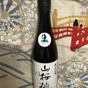 日本最古の酒蔵★茨城 「山桜桃(ゆすら) 純米大吟醸 生」を呑んでみました!