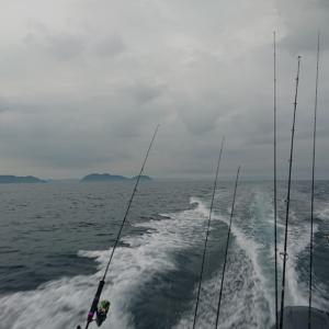 魚釣りスタート(^_^)/