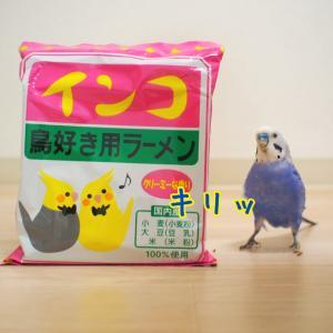 インコ 鳥好き用ラーメン【ピィちゃん編】