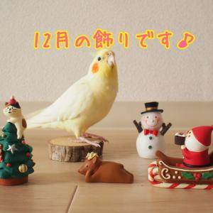 12月の飾り♪♪