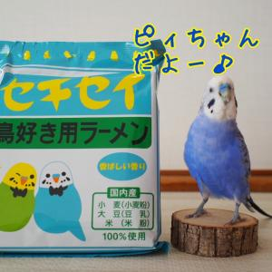 セキセイ 鳥好き用ラーメン