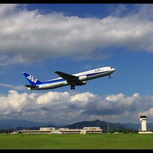 表情 高知龍馬空港(RJOK/KCZ)