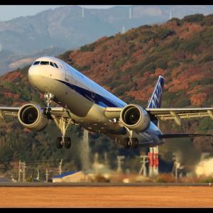 ANA562 高知龍馬空港(RJOK/KCZ)