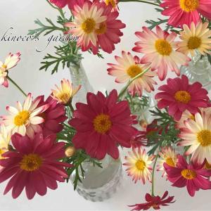 4月のDIY花壇とコンテナ周辺お手入れ