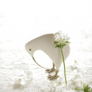 White on white ベゴニア