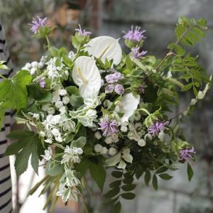 アンスリュームの花束