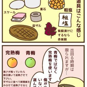 酸っぱ〜い*梅干しの作り方①