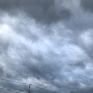 台風19号、男子バレー、最近の稼働