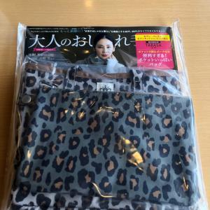 大人のおしゃれ手帳12月号増刊付録タバサ便利すぎるポケットいっぱいバッグ