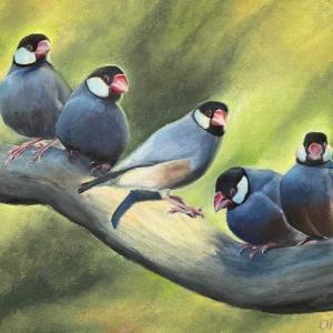文鳥(油絵)