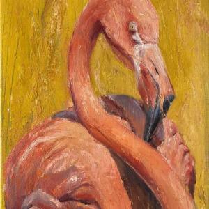 ホノルル動物園のアメリカフラミンゴ(油絵)