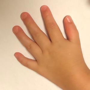 お箸の練習と、にこの左手事情