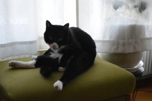座ったままだとたしかに転ばないけどそれでいいの?