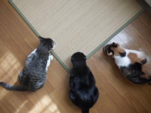 三人寄れば文殊の知恵。