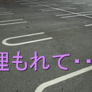 道の駅の片隅で・・・車中泊の哀しさ