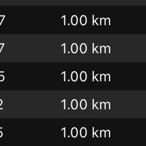 【2】2019年札幌マラソンレースレポ【10キロまで】