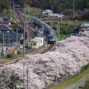 【特集・鉄道と桜】 JR九州 長崎本線 肥前飯田駅 (2019.04.04)