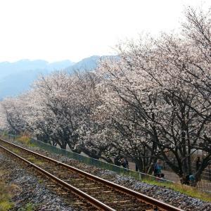 【SWEET TRAIN 或る列車】 JR九州 長崎本線・旧線 キロシ47形 「JRKYUSHU SWEET TRAIN『或る列車』」 高田~長与 (2018.03.25)