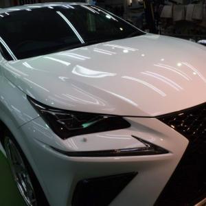 2021/7 レクサス・NX300 Fスポーツ(ホワイトノーヴァガラスフレーク)新車時に他店様でコーティングされておられたようですが再施工でのご入庫でした。札幌市東区より【スタンダードガラスコーティング】PRO PCX-V110(撥水性低撥水・濡れたような艶・耐薬品性)