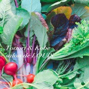 【私の元気の源】おうちdeポーセラーツ.ハーバリウムキットを申し込み頂くと野菜特典が!
