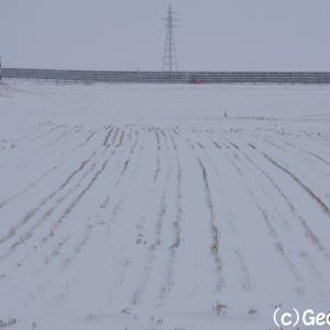 冬に初めて訪れました