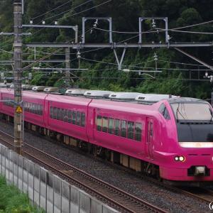 団体列車スターライト舞浜号