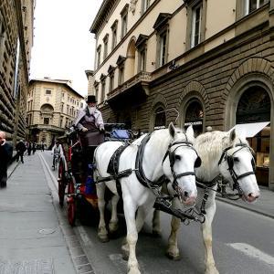 イタリア旅行記2)ミケランジェロ広場が印象的だったフィレンツェの一日