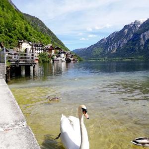 オーストリア旅行記6)世界遺産ハルシュタット観光2日目|海外女一人旅ブログ