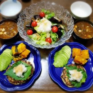 【家ごはん/献立】 ハンバーグの献立2日分 [レシピ] 揚げナスおろしポン酢サラダ / 野菜たっぷり豆腐ハンバーグ