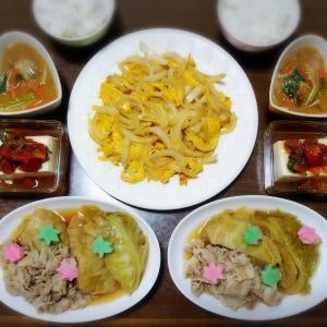 【家ごはん/献立】 とろっとろキャベツの煮物 [レシピ] 新玉ねぎ卵焼き / 豚バラ肉とキャベツの煮物  * 桜 *