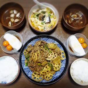 【家ごはん】 きんぴら蓮根 と サバ缶と白菜の卵とじ